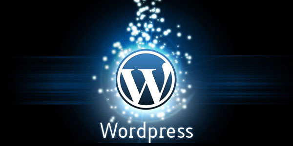 chen-video-tu-youtube-vao-wordpress
